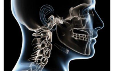 2010 – On parle de nous dans le Magazine de l'Ostéopathe